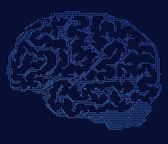 Computer style brain