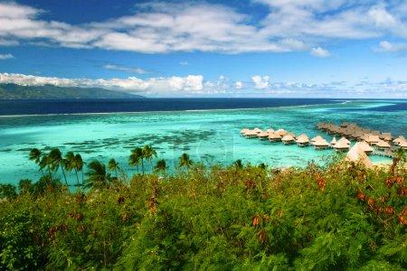 Landscape of paradise island Moorea, French Polynesia