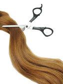 Nůžky v sobě zázvorové vlasy a vlasy