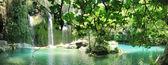 Beautiful waterfall in forest panorama