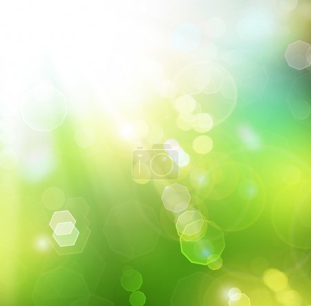 Beautiful Nature Spring Bokeh