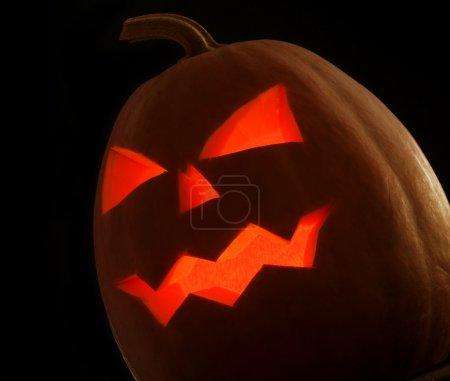 Halloween Pumpkin over Black