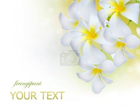 Photo pour Fleurs - image libre de droit