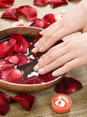 spa de manos. concepto de manicura