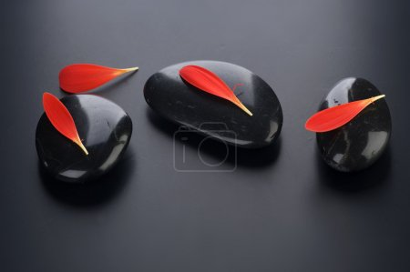 Photo for Zen Spa Stones With Red Petals - Royalty Free Image
