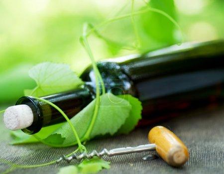 Photo pour Bouteille de vins et raisins feuilles - image libre de droit
