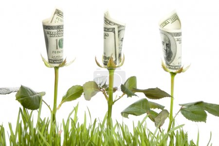 Financial Growth. Conceptual Image