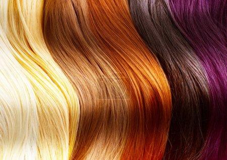 Photo pour Palette de couleurs de cheveux - image libre de droit