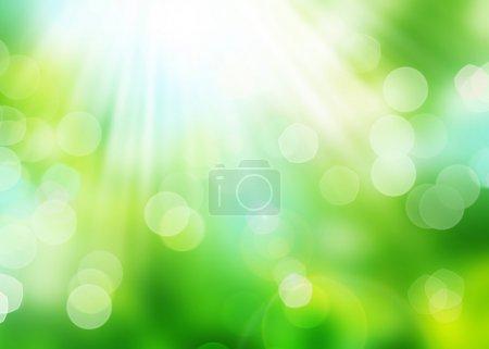 Beautiful Nature Bokeh. Blurred Background