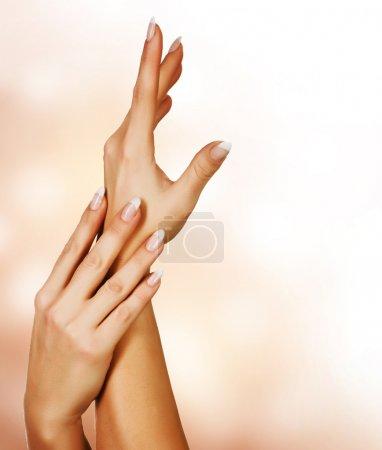 Photo pour Belles mains féminines. notion de manucure - image libre de droit