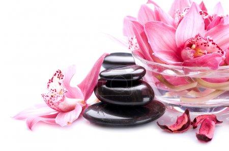Spa Stones Massage