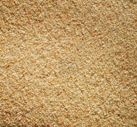 Photo pour Gros plan sur le sable - image libre de droit