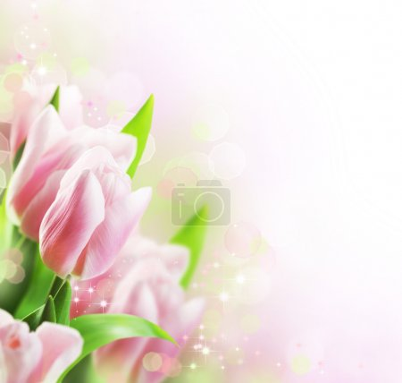 Photo pour Tulipes printemps design frontière - image libre de droit