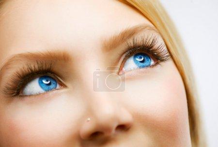 Photo pour Oeil bleu - image libre de droit