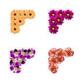 Květiny Foto rohy