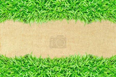 trame de l'herbe sur fond de texture de toile de jute