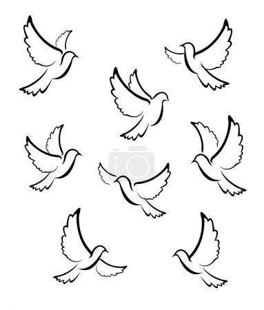 Photo for Dove Vector - Royalty Free Image