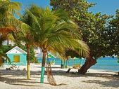 plage des îles Caïmans