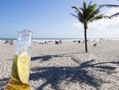 Palm Shadows on Cocoa Beach