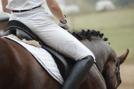 Photo pour Femme sur un cheval - image libre de droit