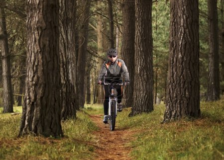 Man practicing mountain biking in the forest