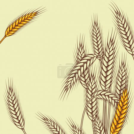 Illustration for Background with ripe yellow wheat ears, vector illustration. - Royalty Free Image
