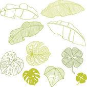 Sada různých listů. vektorové ilustrace