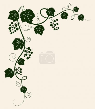 Beautiful grape vine green silhouette on beige background.