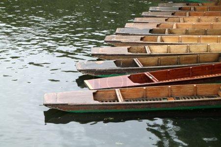 Punts in river Cam