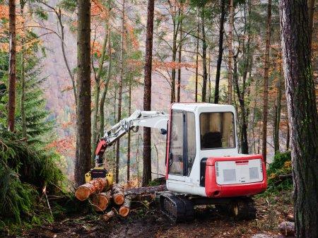 Photo pour Opérateur de machine outil pour travailler dans la forêt - image libre de droit