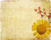 Zemité květinové pozadí obrázek a konstrukční prvek