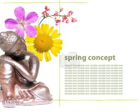 Photo pour Bouddha et fleurs de printemps - image libre de droit