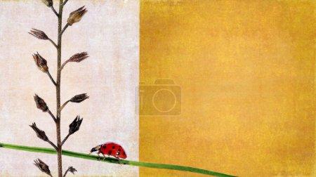 Photo pour Image de fond belle avec les éléments floraux et coccinelle. élément de design très utile. - image libre de droit
