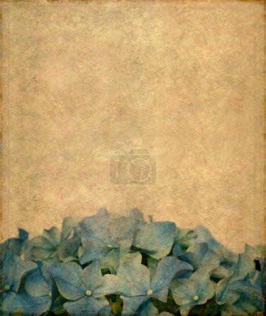 Photo pour Joli élément de fond et design floral - image libre de droit