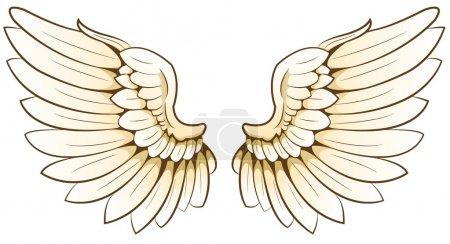 Illustration pour Une paire d'ailes - image libre de droit