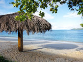 Beach on the Seychelles