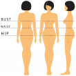Womens size lines