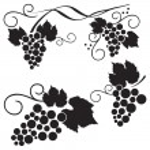 Set of grape design elements