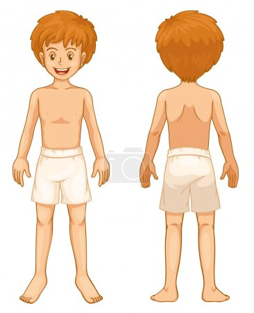 Illustration for Illustration of teen front and back - Royalty Free Image