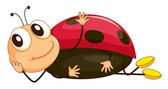 Illustration of a comical ladybug