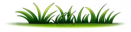Illustration for Illustration of a plant element - Royalty Free Image