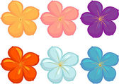 Illustration of flowers in different colours