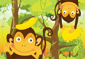 Illustration of a monkeys on a white background