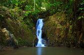 Waterfall in the jungle, Phuket, Thailand