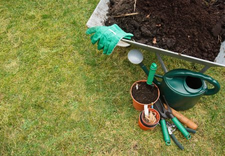Gardening tools on the lawn