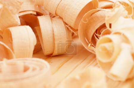 Fresh wood shavings