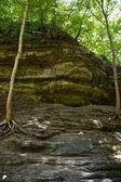 Green Cliff