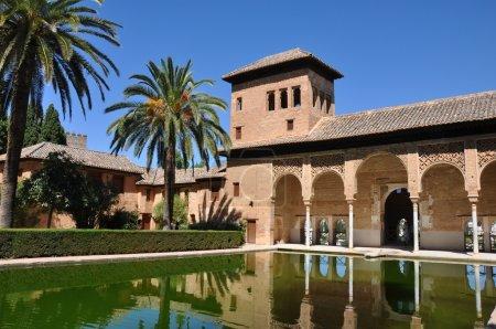 Alhambra palace basin