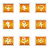 Set of 9 glossy web icons (set 18)