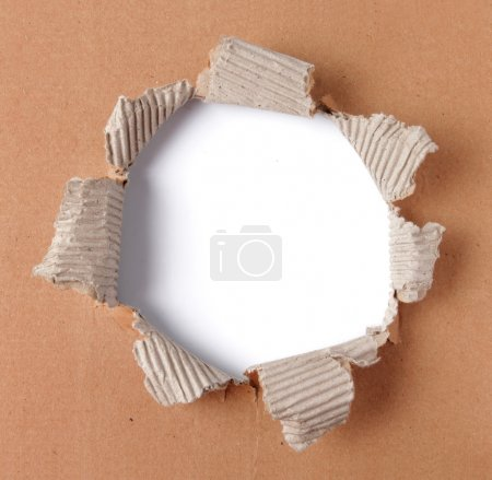 Photo for Brown corrugated paper torn in the center - Royalty Free Image